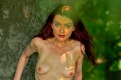 Erotik im Wald  XII