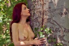 Erotik im Wald I
