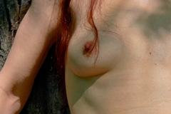Erotik im Wald XI