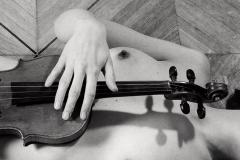 Violine III