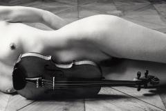Violine IV
